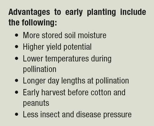 advantages to planting early