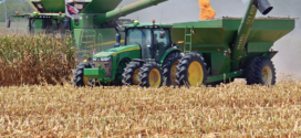 Mississippi State issues corn hybrid trial results, recommended 2021 hybrids