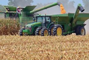 2018 Corn Hybrids