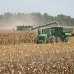 Arkansas corn harvest