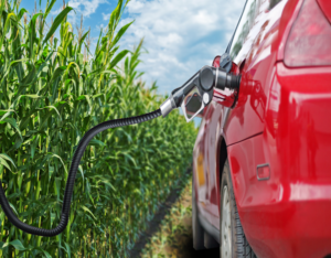 renewable fuel standards