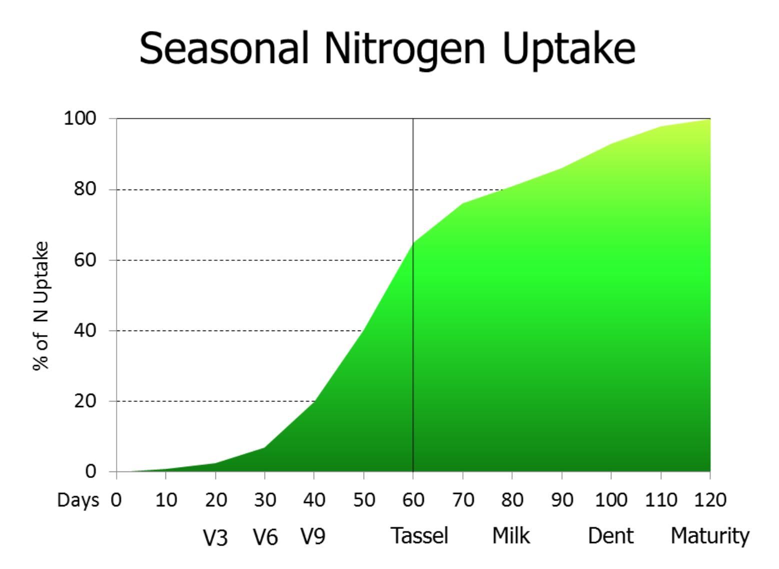 corn nitrogen uptake graph