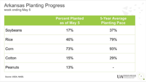 2019 corn planting progress