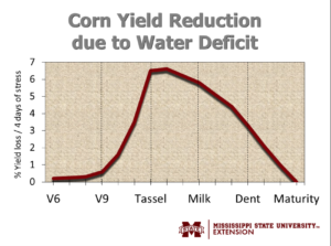 corn irrigation chart