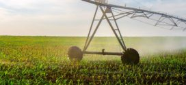 Alabama Extension Offers Insight On Center-Pivot Irrigation Costs