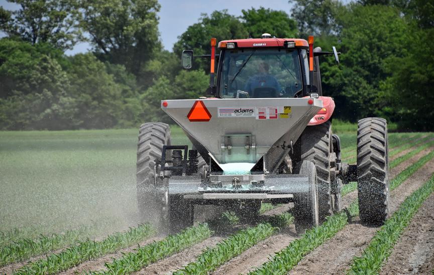corn fertilizer