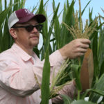 seth murray, Texas A&M corn breeder