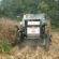 Bumper corn crop predicted for 2020