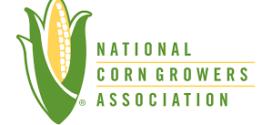 Corn yield contest winner sets record with 616-plus bushels