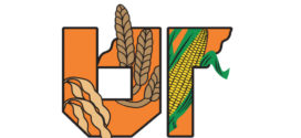 UT hosts 25th annual grain and soybean conference, Feb. 6