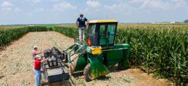 Biodegradable Spray Helps Battle Crop Pathogens