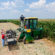 Biodegradable Spray Helps Battle Crop Pathogens