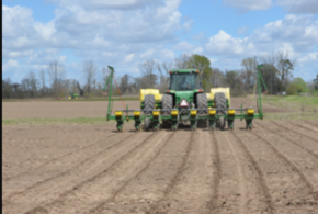 Louisiana farmers begin planting amid uncertain prices