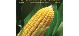 2021 Corn Hybrids