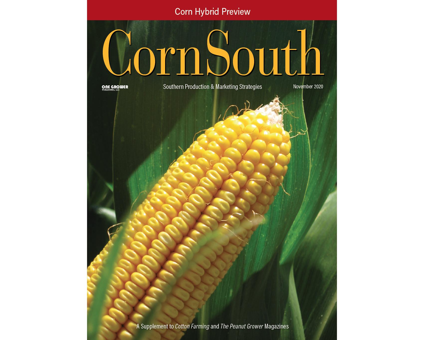 nov 2020 south cover