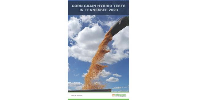 UT corn hybrid trials