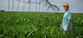 OK State's TAPS program lets farmers test drive new irrigation technologies