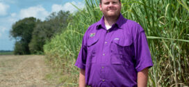 LSU AgCenter names new cotton and corn specialist