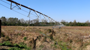 row crop fertigiation