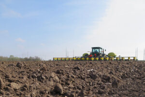 texas corn planting
