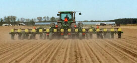 With winter nearly behind them, Arkansas growers begin early planting