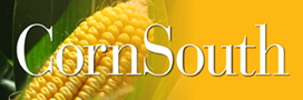 CornSouth.com